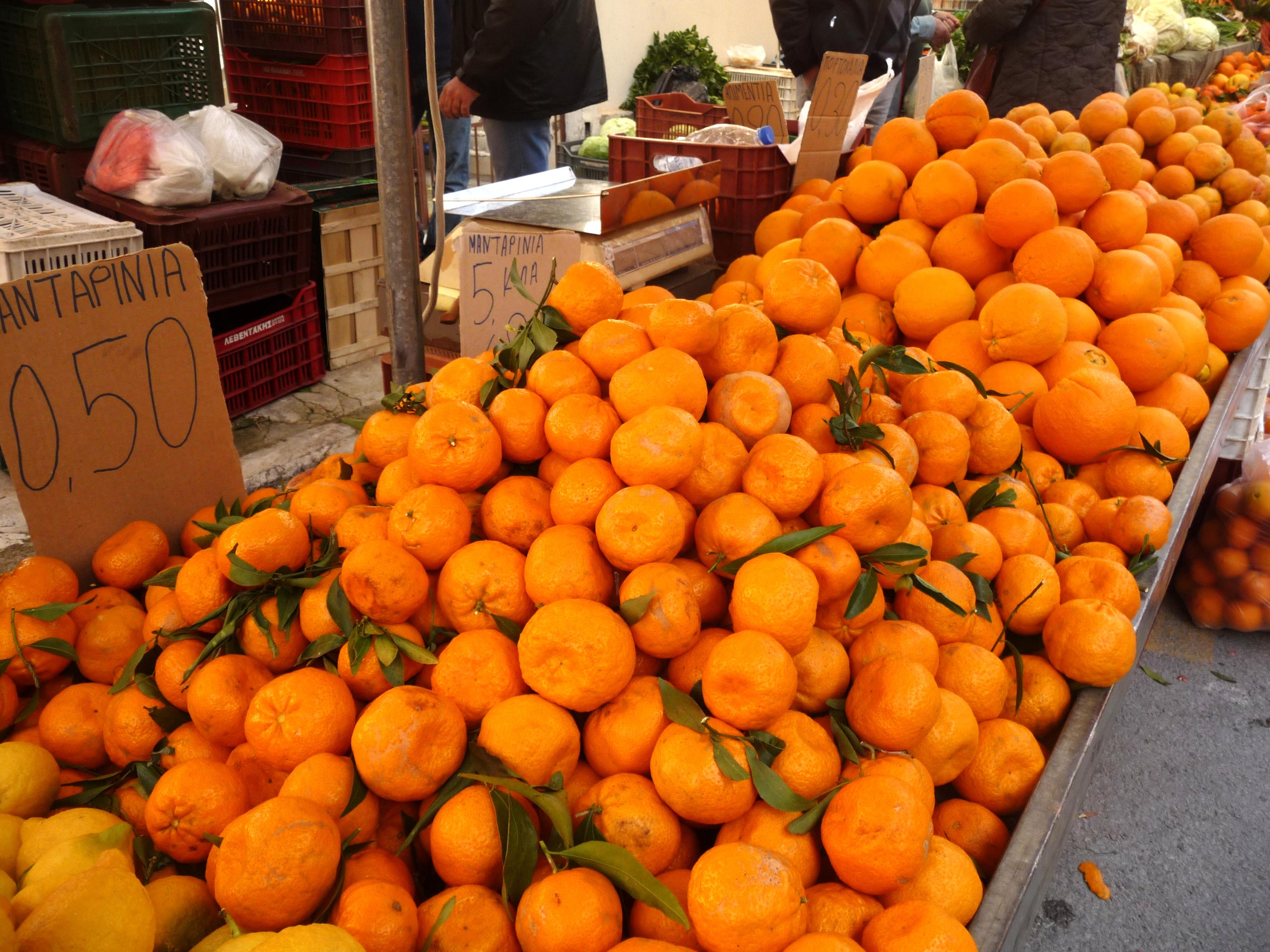 A riot of Orange