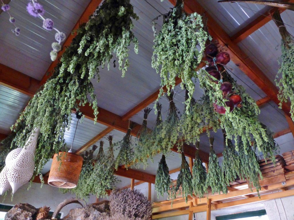 Herbs drying in Janine's shop