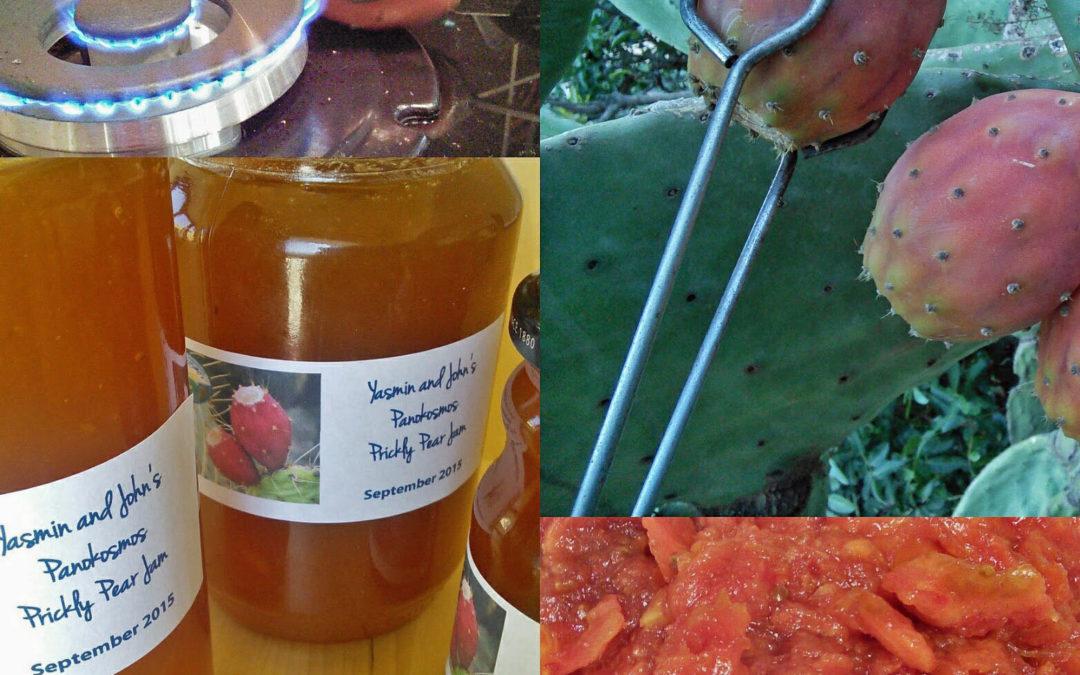 Making Panokosmos Prickly Pear Jam