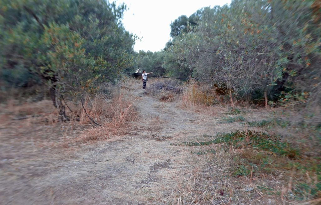 Route to the tomb thru the olive grove