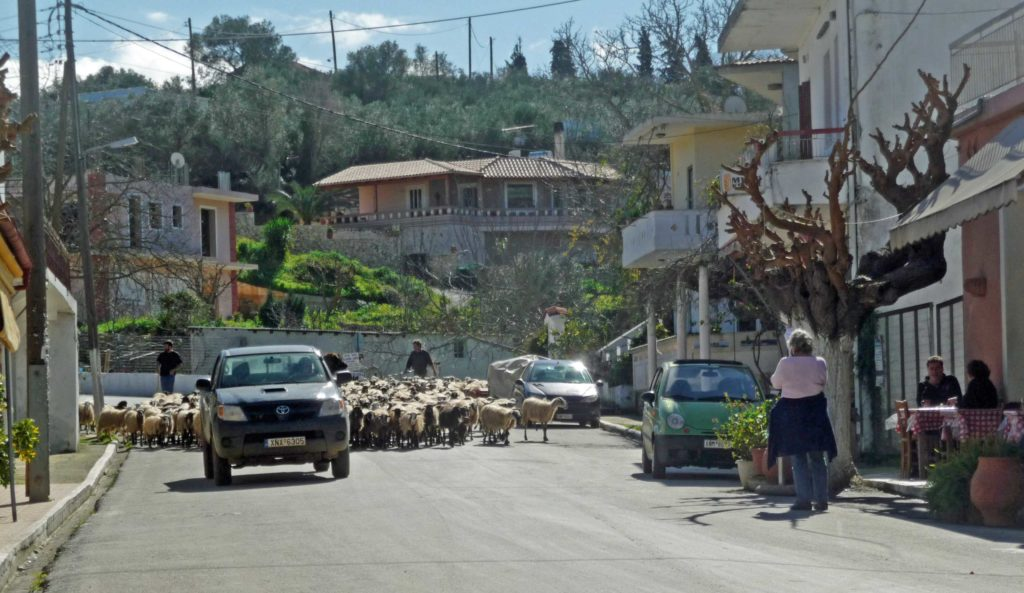 Discover a Cretan village - Stylos high street